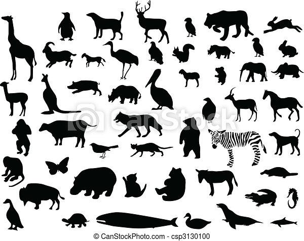 silhuetas, cobrança, animal - csp3130100