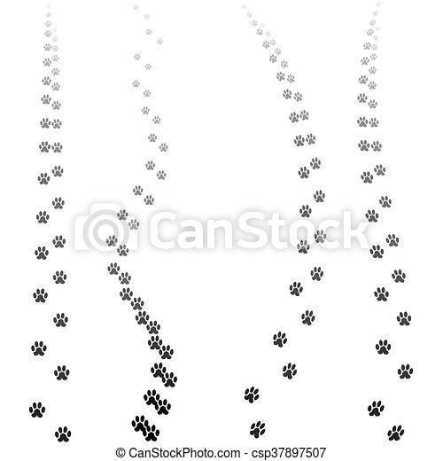 silhuetas, impressões, isolado, pata - csp37897507