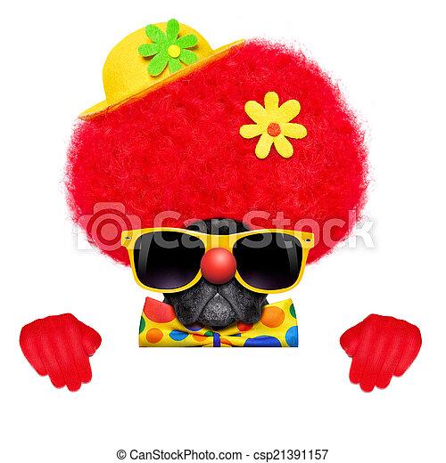 silly clown dog - csp21391157