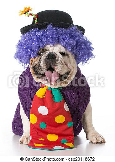 silly dog - csp20118672
