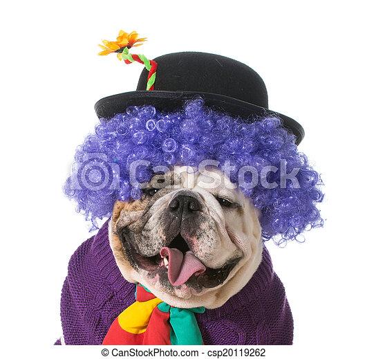 silly dog - csp20119262