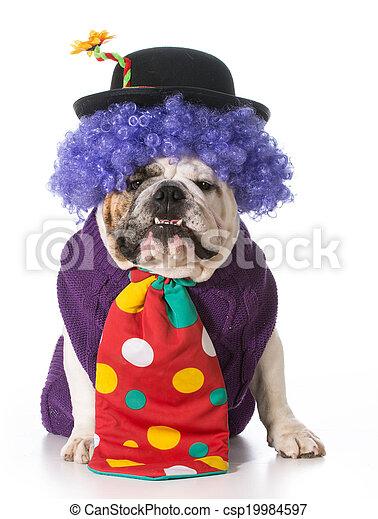 silly dog - csp19984597