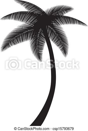 silueta, árvore palma - csp15793679