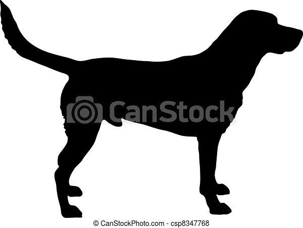 Labrador silueta - csp8347768