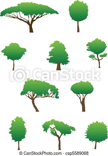 Siluetas de árbol - csp5589068