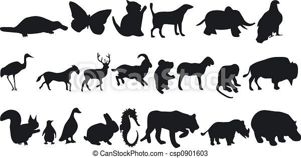 Siluetas de animales - csp0901603