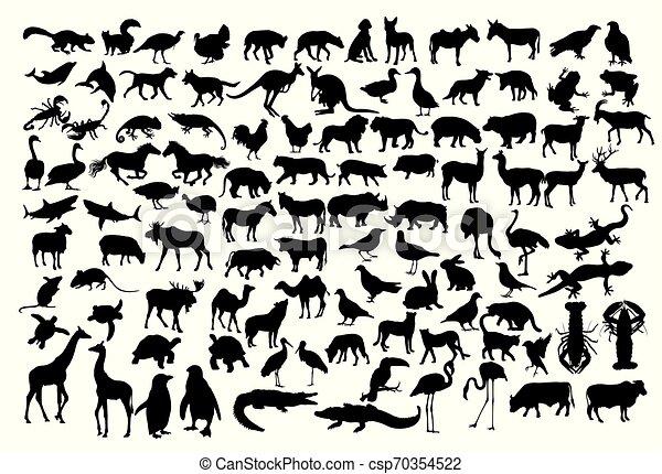 Siluetas de animales - csp70354522