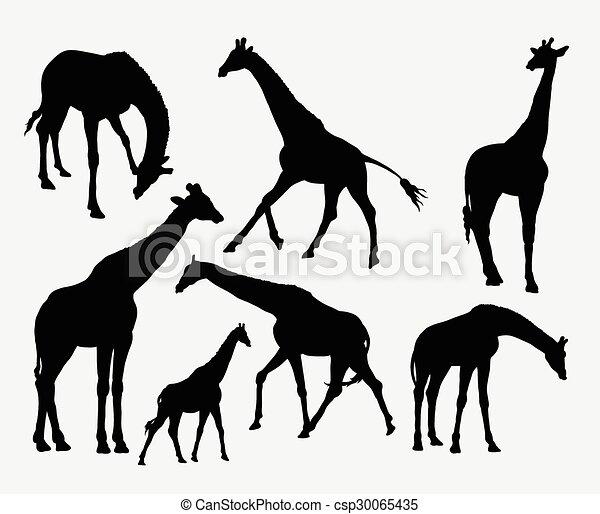 Siluetas de animales jirafa - csp30065435