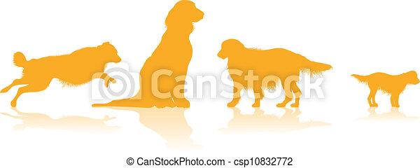 Perros siluetas - csp10832772