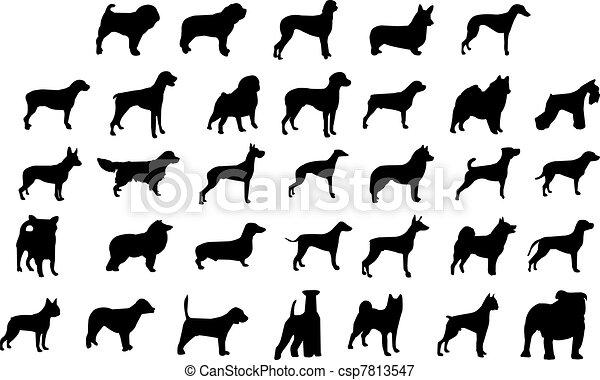 Los perros crían siluetas - csp7813547