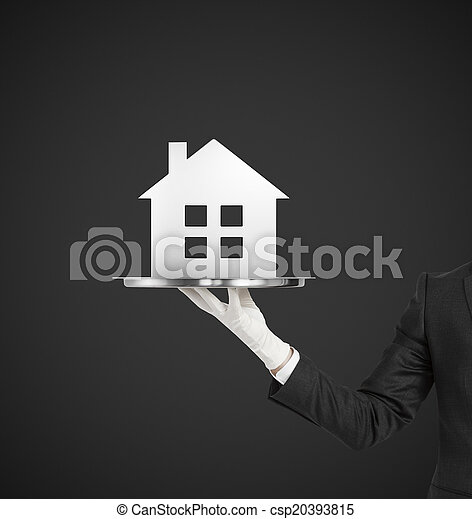 silver plate with metal house - csp20393815