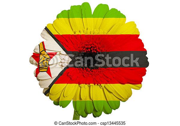 liebe Simbabwe