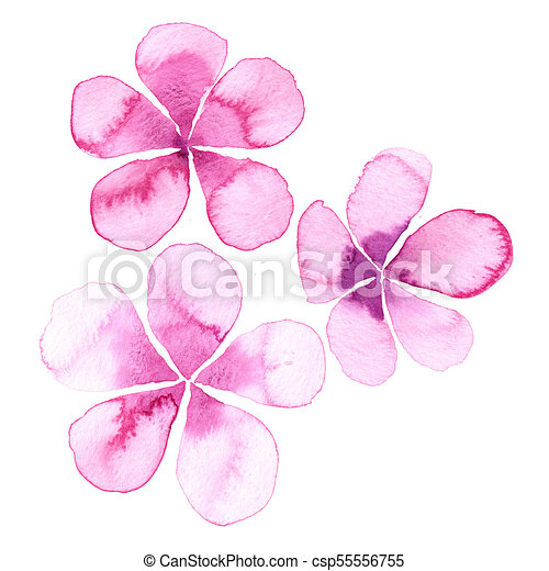 Simple Watercolor Flowers Pink With Five