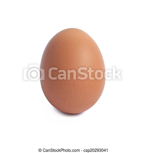 Single brown chicken egg isolated on white - csp20293041
