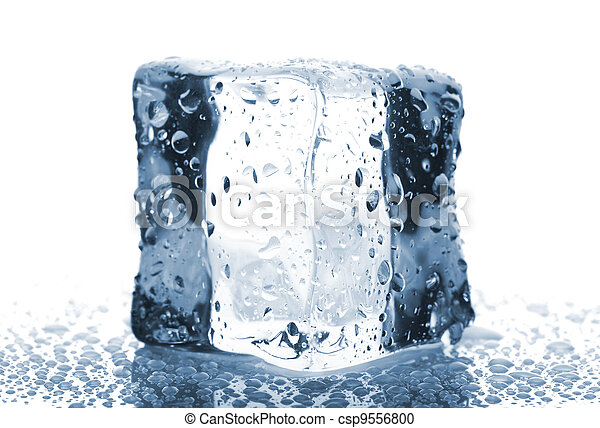 authorized site save off best selling Single ice cube