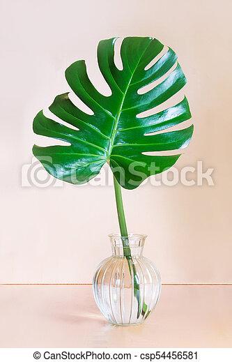 Single Leaf Of Monstera Plant In Vase On Pink Background Concept