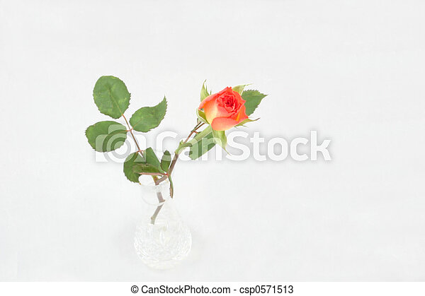 Single Rosebud In A Vase Single Rosebud In Crystal Vase