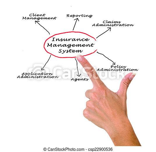 Sistema de gestión de seguros - csp22900536