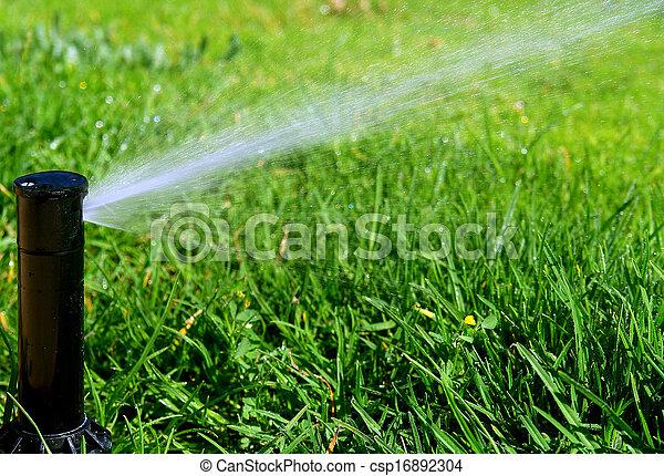 sistema irrigação - csp16892304