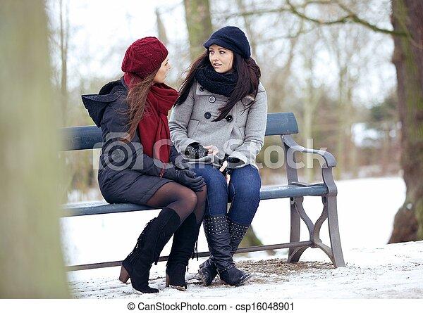 sittande, bestfriends, bänk, konversation, medan, allvarlig - csp16048901