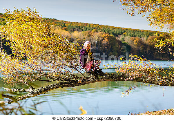 sitting in the tree in autumnal sunset atmosphere - csp72090700