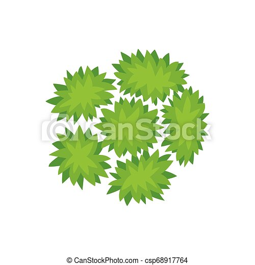 Six bushes. View from above. Vector illustration. - csp68917764