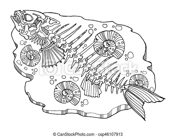 Skeleton of fish coloring book vector illustration. lace pattern.