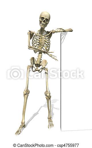 Skeleton Standing Beside Sign or Border - csp4755977