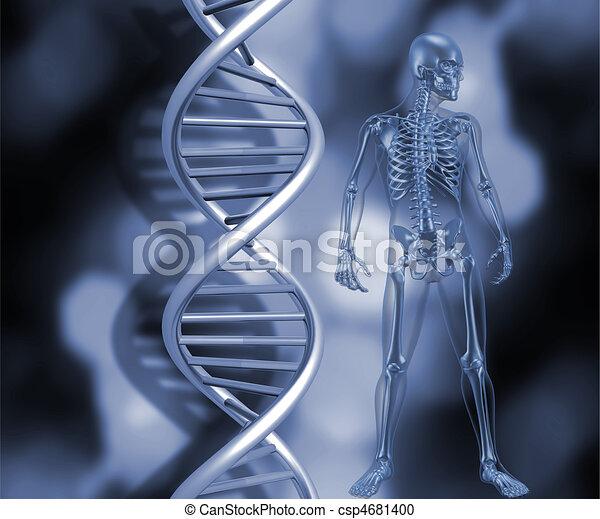 Skeleton with DNA strands - csp4681400