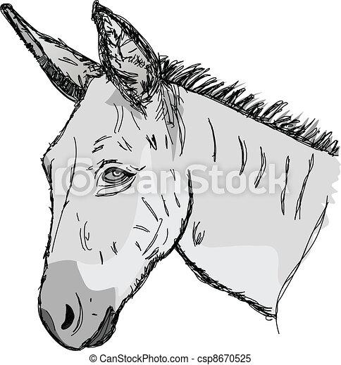 Sketch donkey head - csp8670525