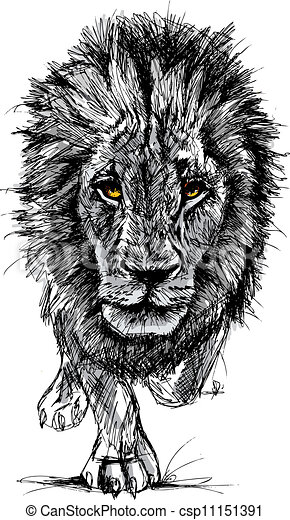 Sketch of a big male African lion - csp11151391