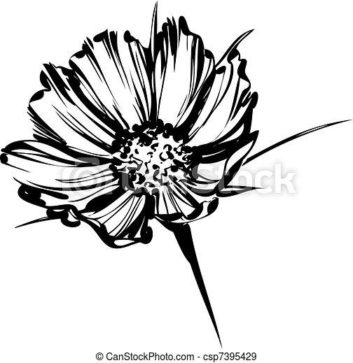 sketch of a wild flower - csp7395429