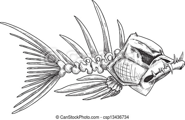 sketch of evil skeleton fish with sharp teeth - csp13436734