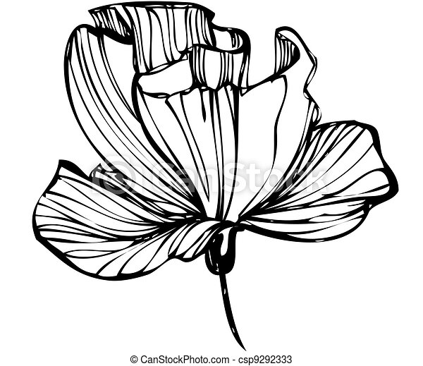 sketch of flower buds on a white background - csp9292333