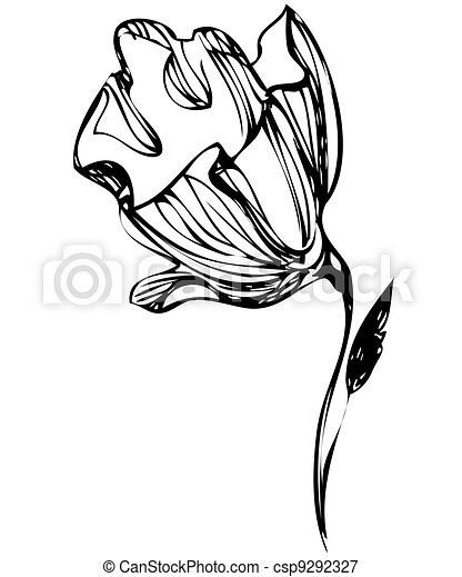 sketch of flower buds on a white background - csp9292327