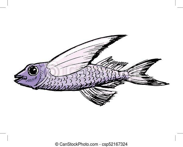 Sketch Of Flying Fish Illustration Of Wildlife Zoo Animals