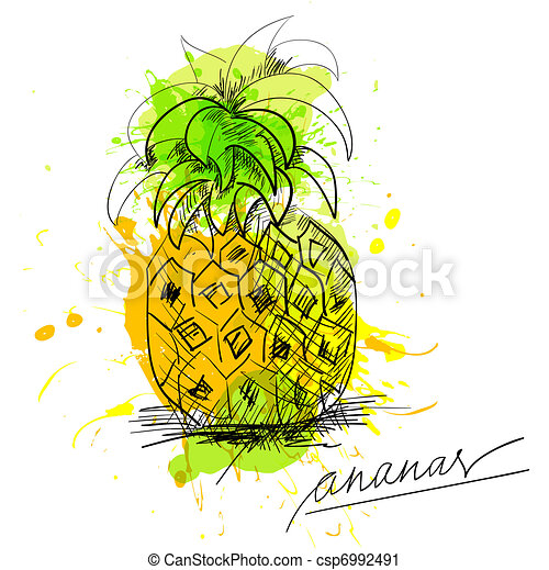 Sketch of pineapple - csp6992491