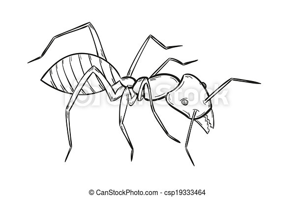 Insect anatomy. silhouette formica exsecta. sketch of ant. ant ...
