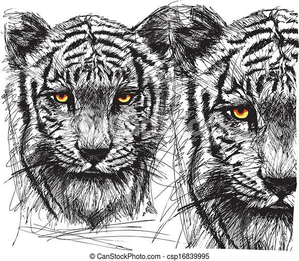 Sketch of white tiger - csp16839995