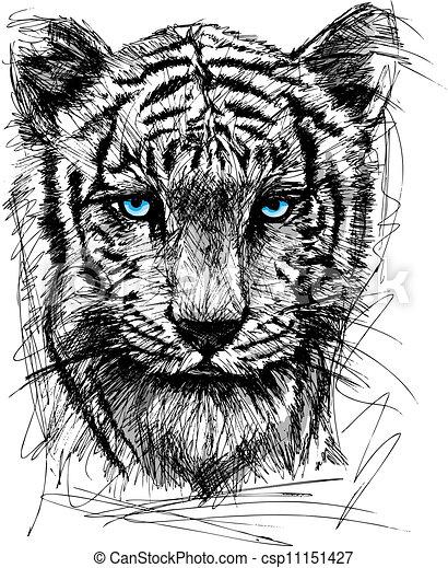 Sketch of white tiger - csp11151427