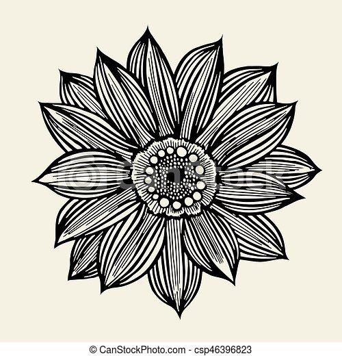 Sketch of wild flowers