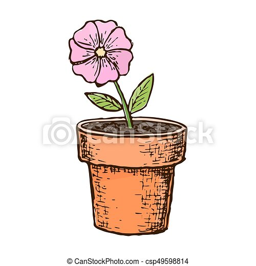 Sketch potted flower - csp49598814  sc 1 st  Can Stock Photo & Sketch potted flower. Potted flower in a pot colorful sketch ...