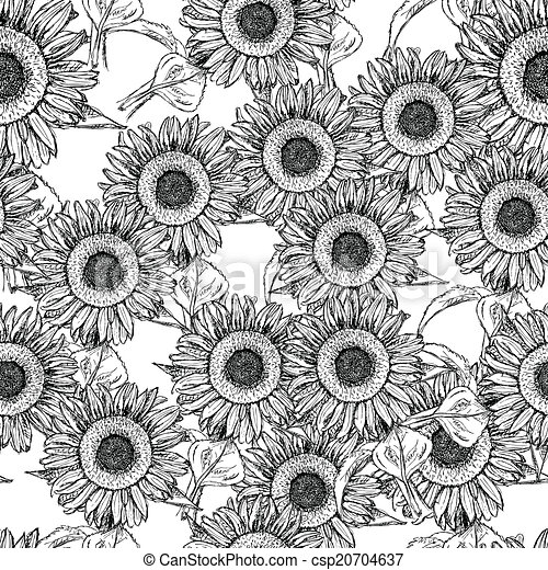 Sketch sunflower, vector vintage seamless pattern - csp20704637