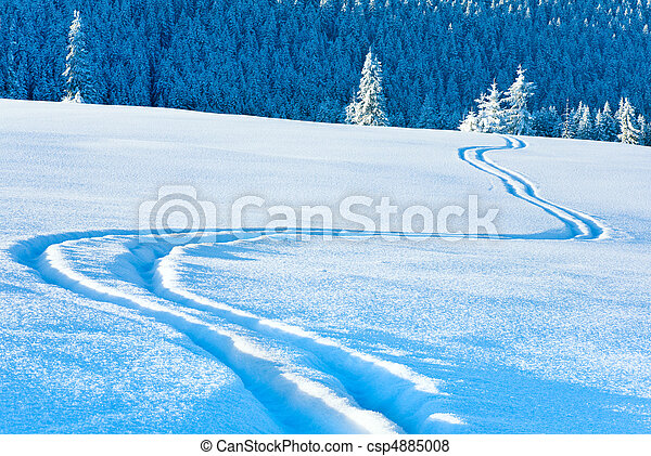 Ski trace on snow surface  and fir forest behind. - csp4885008