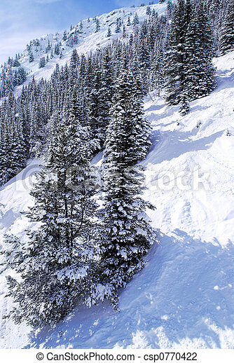 Ski tracks in mountains - csp0770422