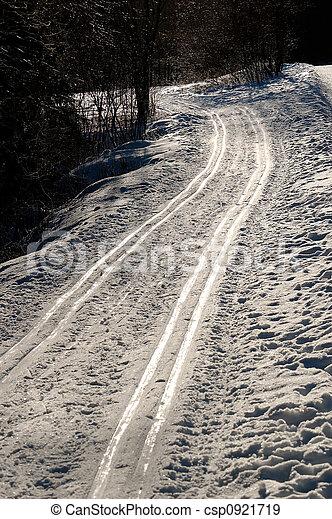 Ski Tracks - csp0921719