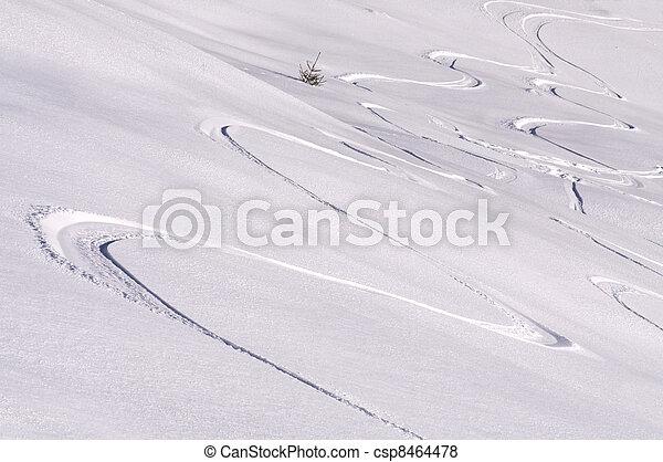 Skiing - csp8464478