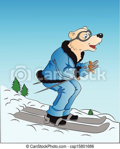 skiing., vetorial, cão - csp15801686