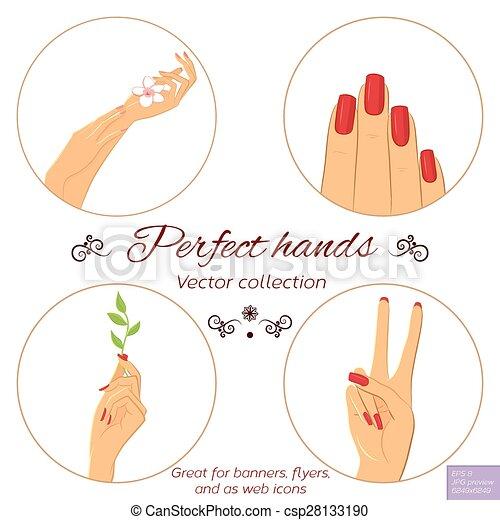 Skincare concept conjunto manicura manos Recorte vector