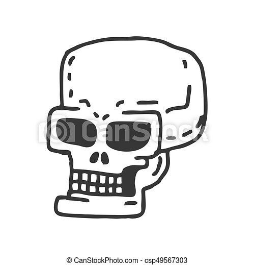 Skull cartoon. skeleton head drawing on white background.